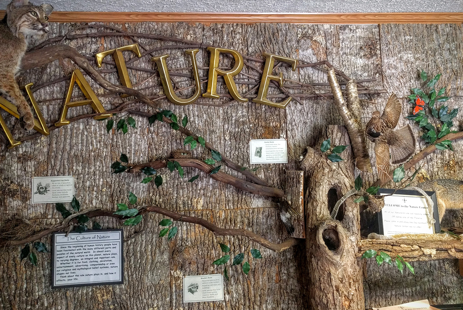 Balsam Mountain Trust Nature Center